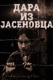 Dara from Jasenovac