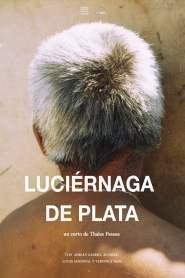 Luciérnaga de Plata