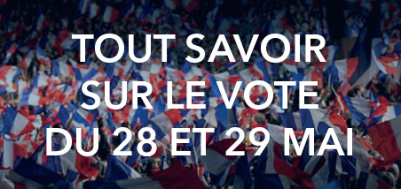 ump_vote_28_29_mai_452x214