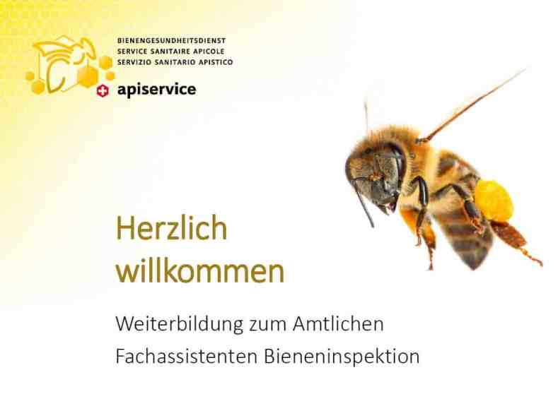 Aubsildung zum Bieneninspektor