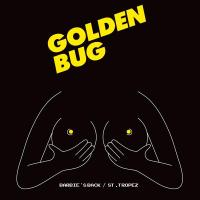 GOLDEN BUG – HOT ROBOT (Electro/Funk – France)