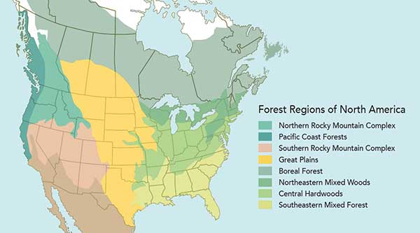 No successional northern hardwood forests are documented in the nhesp database. Welcome To The State Of Montana Arboretum State Of Montana Arboretum University Of Montana