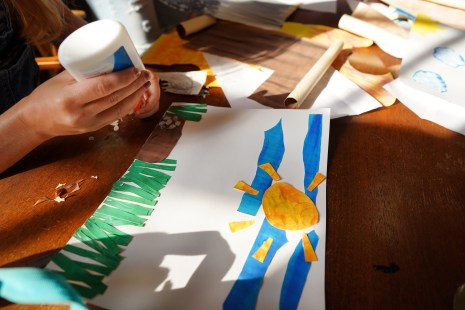 Students in a UMW course called Literature and the Arts in Elementary Education took inspiration from children's author Eric Carle to create a pair of books about conservation and the life cycle of grasshoppers.