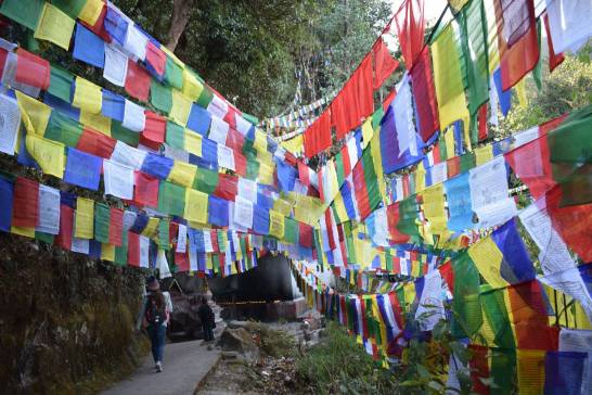 One of Rothstein's favorite memories of visiting Nepal was seeing prayer flags flapping in the breeze on an early morning hike. Photo courtesy of Emily Rothstein.