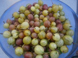 Stachelbeer/Kiwi-Marmelade
