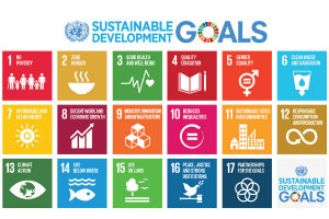 Visual identity of the SDGs that shows each individual goal in colour boxes