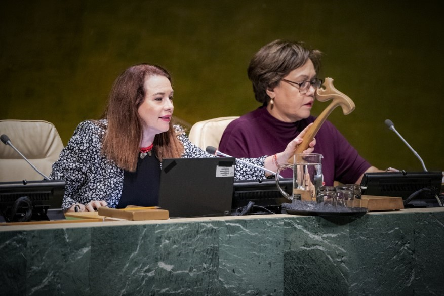 75th Plenary Meeting of the General Assembly