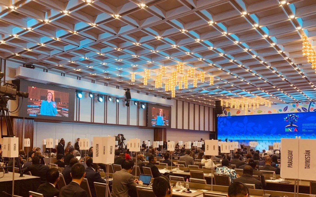 Ministerial Meeting of the Non-Aligned Movement