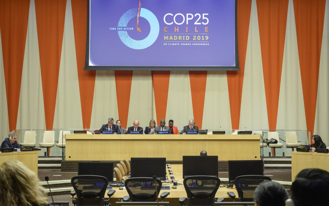BRIEFING TO MEMBER STATES ON COP 25