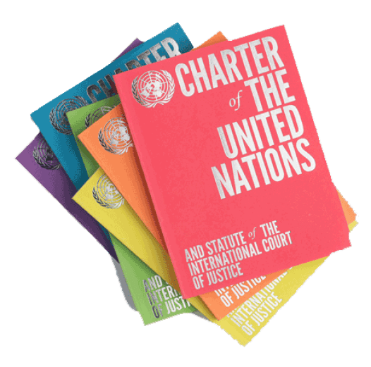 Image result for (Charter of The United Nations)