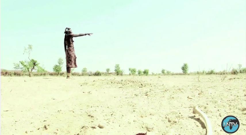 ناميبيا: أزمة الجفاف