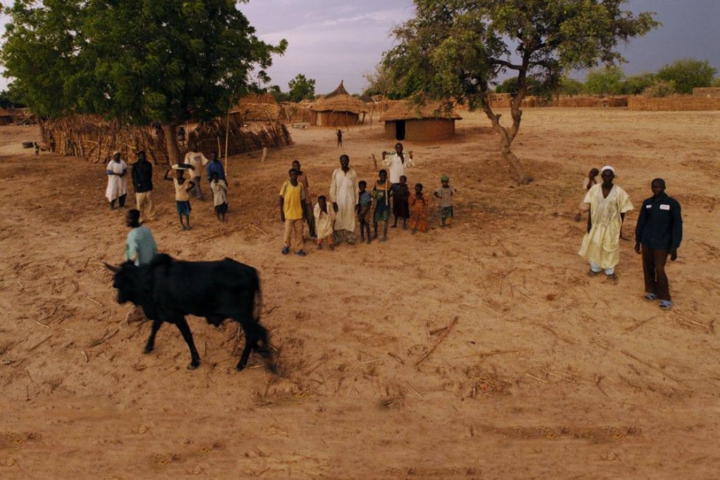 Los resultados del cambio climático y las presiones ambientales son agudamente experimentados por las comunidades rurales como la aldea Dan Kada en Nigeria. Foto FIDA/David Rose