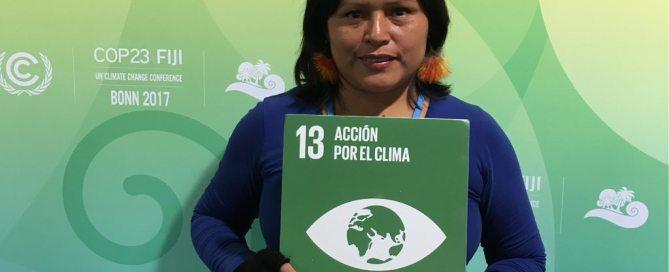 Rosalía Yampis, directora del programa de mujeres de la Asociación Interétnica de Desarrollo de la Selva Peruana (AIDESEP). Foto: ONU / Karin Orantes