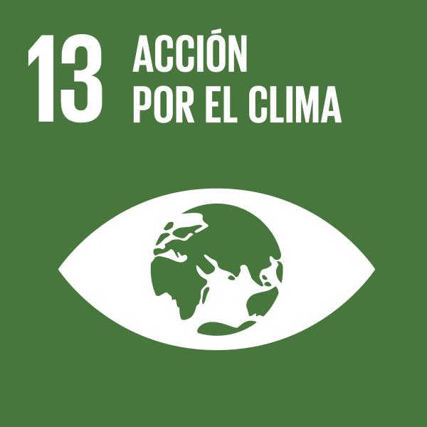 Resultado de imagen de icono ODS 13