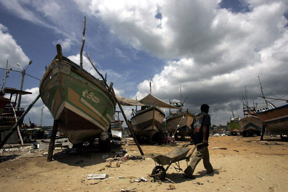 Des bâteaux de pêche au Sri Lanka. Photo : FAO/Prakash Singh