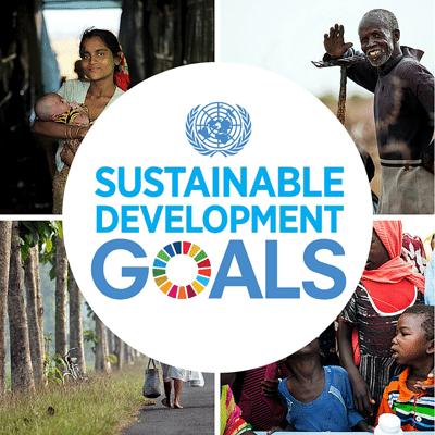 Web-button-for-SDGs-smaller