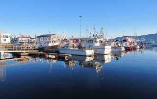 Whale-watching and fishing boats in the harbour of Reykjavik, Iceland. Photo: UNEP GRID Arendal/Peter Prokosch