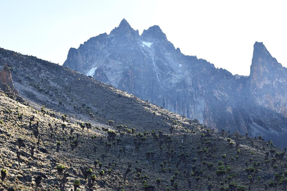 Photo: Mount Kenya's ice cap has receded 92% in the past century.