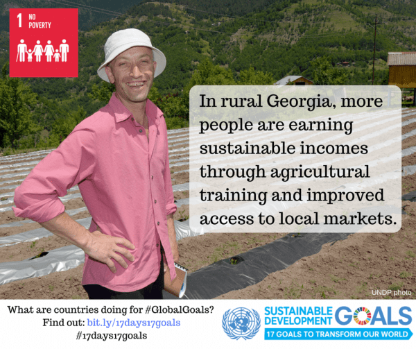 Photo: In rural Georgia, more people are earning sustainable incomes through agricultural training and improved access to local markets.