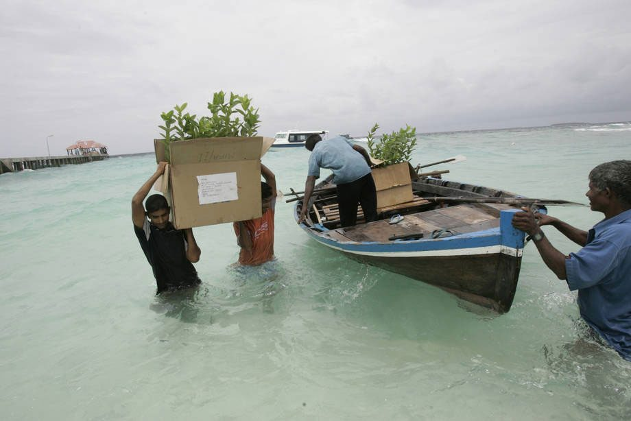 Photo: Fisherman in the Maldives