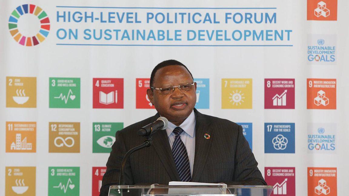Frederick Musiiwa Makamure Shava, President of ECOSOC