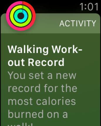 Walking Workout Record