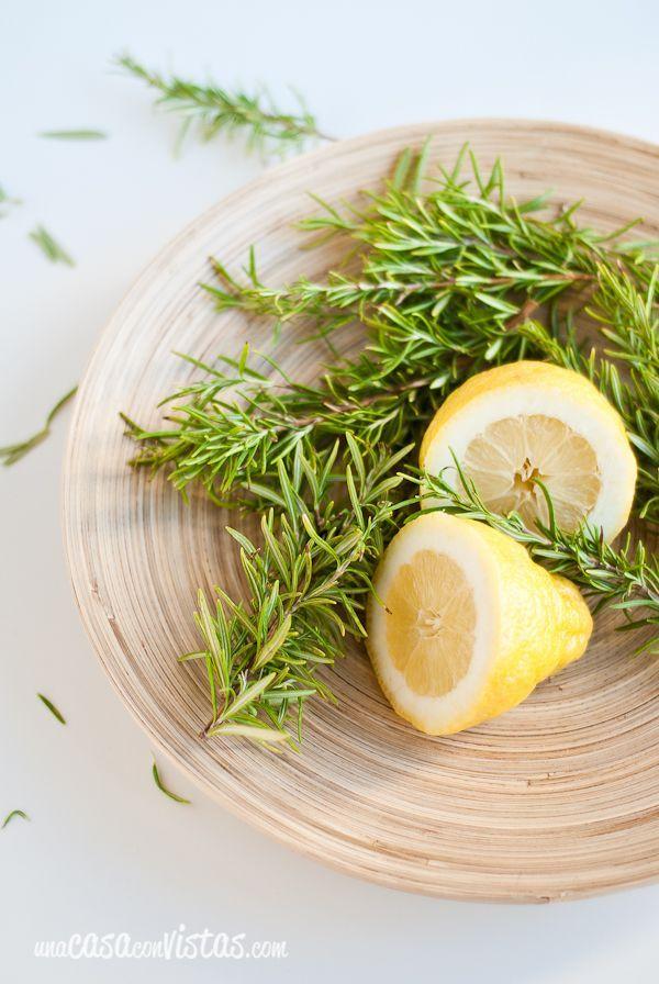 Resultado de imagen para romero y limon