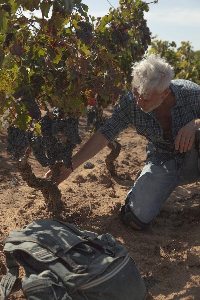 Marco Simonit ai Signori del Vino Una casa in campagna blog Alessandra Colaci