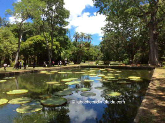 giardino-botanico-pamplemousses-mauritius