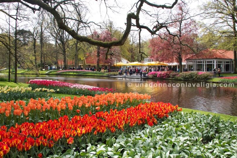 parco keukenhof olanda