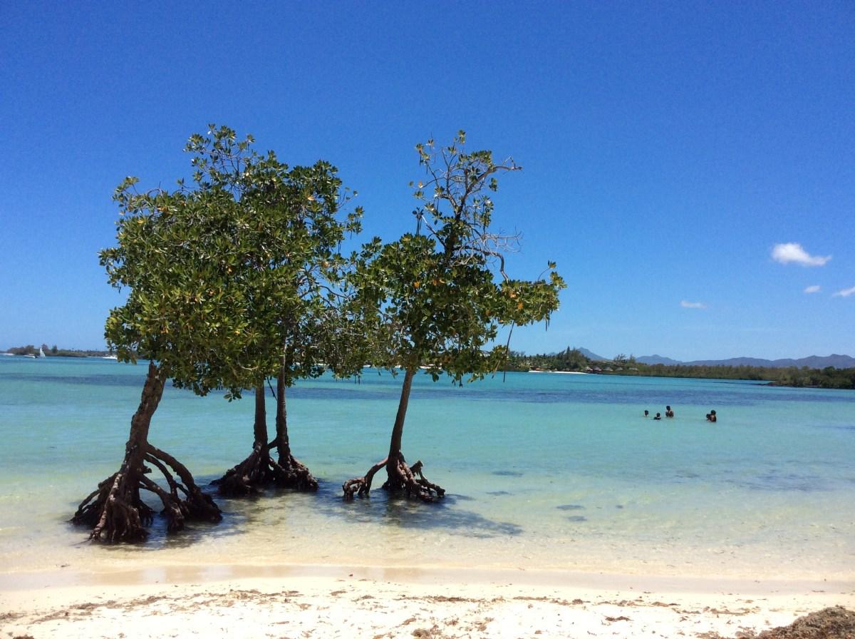 Quanto costa e come organizzare un viaggio a Mauritius?