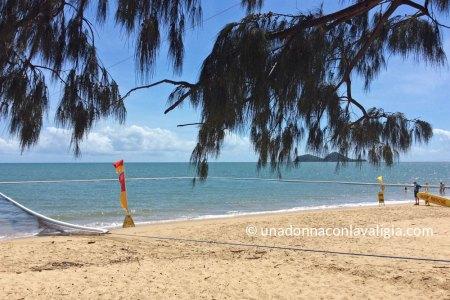 palm cove queensland rete protezione meduse australia