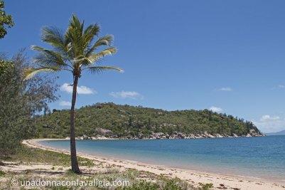 spiaggia magnetic island queensland australia