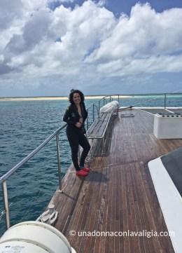 michealmas cay barriera corallina queensland