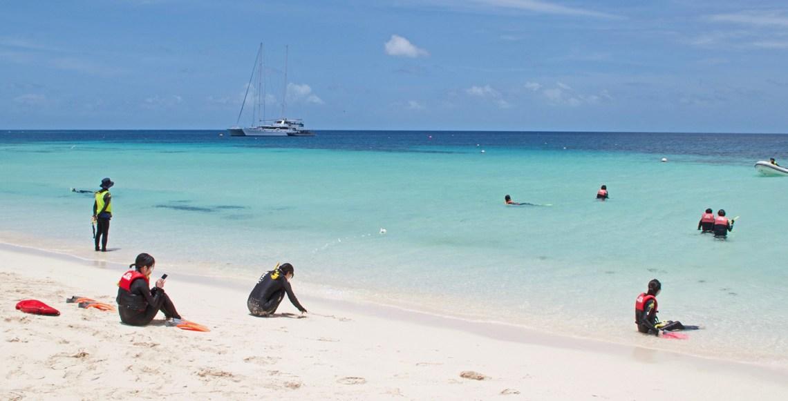 snorkeling-escursione-grande-barriera-corallina-michaelmas-cay