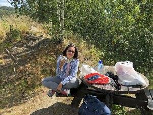 picnic in Norvegia