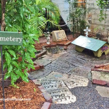 cimitero gatti hemingway key west