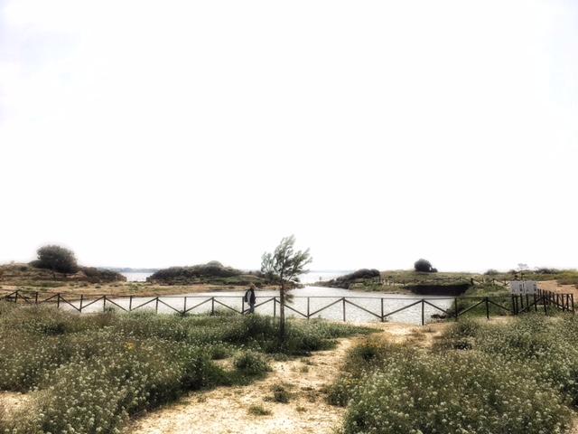 Kothon Isola di Mozia