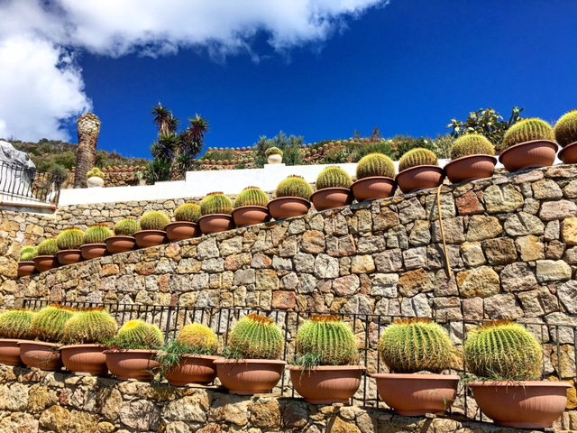 Villa coi cactus Panarea