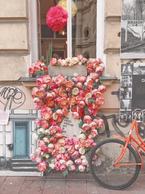 Rose a Kazimierz Cracovia