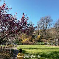 Visita al Giardino Viatori di Gorizia