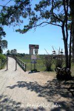 pista ciclabile di Bibione