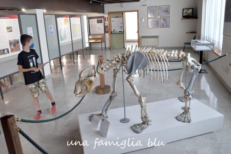 museo della grotta pradis