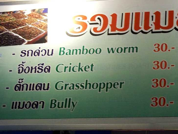 What are the unique foods and drinks of SE Asia?