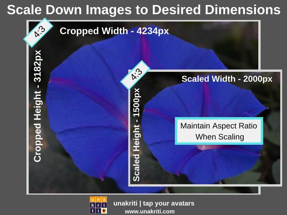 How to scale photos for image optimization?