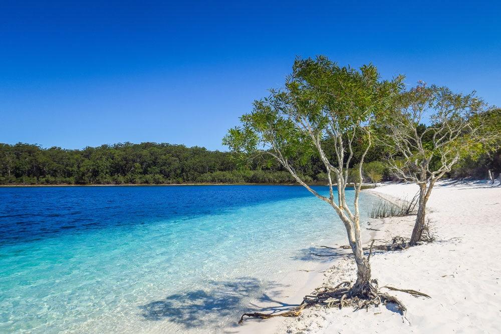 Lac Mckenzie sur Fraser Island