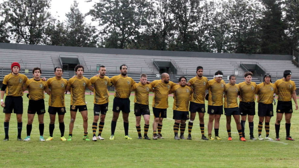 rugby-8