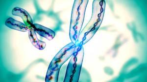 Neuronas-¿se-puedencrear-nuevas?-UNAMGlobal