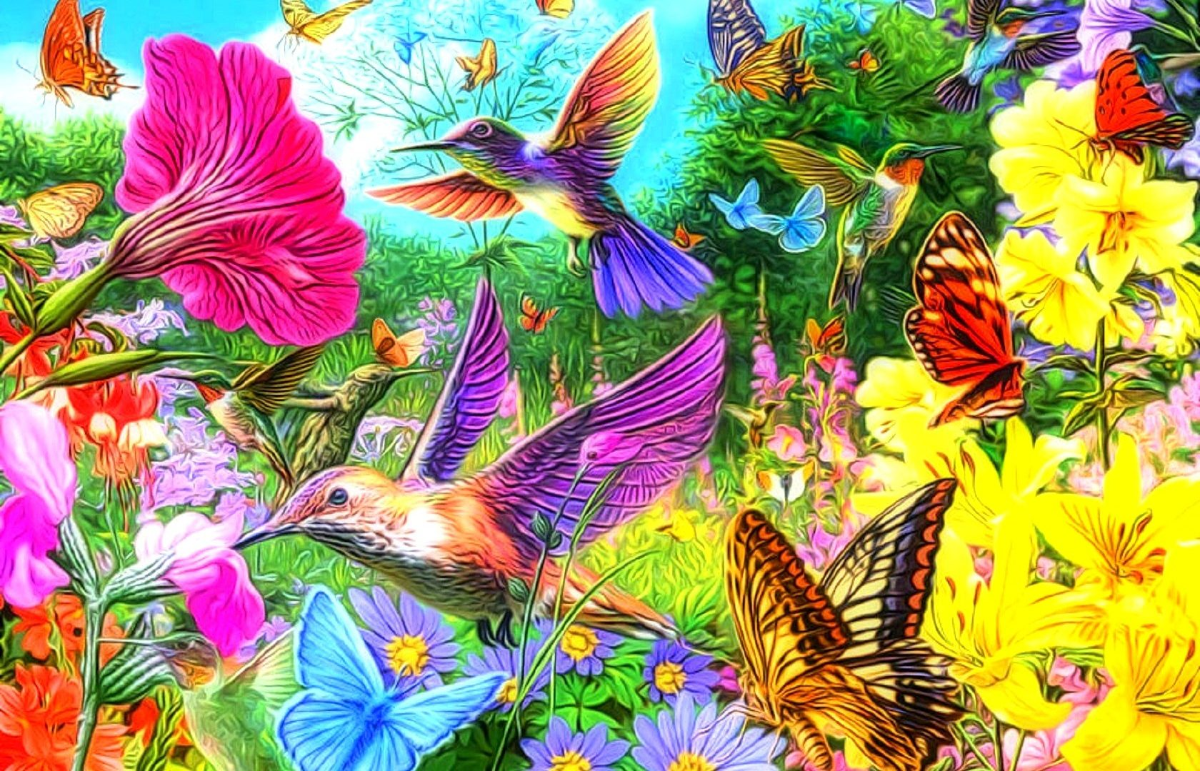 Butterfly Coloring Pictures Of Gardens