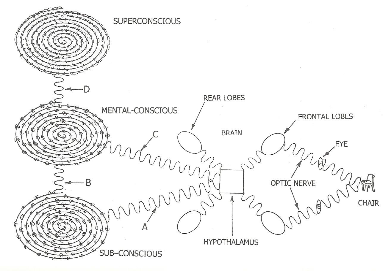 The Psychic Anatomy Development Concept Part Ii
